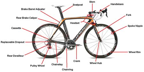 bike-overview.jpg