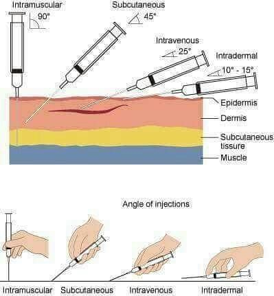 paramedicsworld_  _#People #pain #learn #life #lessons #injections #syringe #biology #science ...jpg