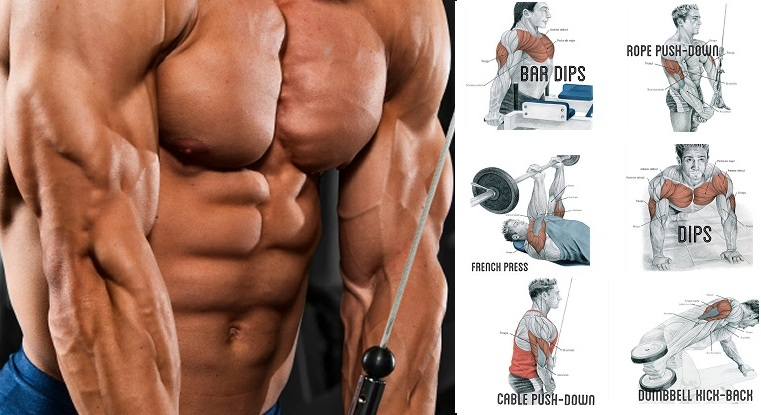 Tricep-Workout-–-Make-Your-Arms-Appear-Bigger.jpg