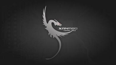 xanmod_wallpaper.png